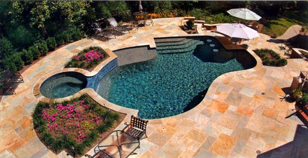 Classic Freeform Swimming Pool Shape